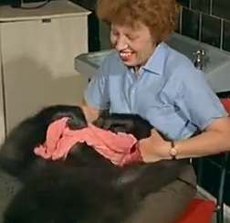 1967 Holiday Camp Music – Joe the baby gorilla takes a bath