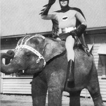 Batman CAN ride an elephant