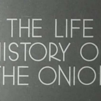 The British Council archive – 120 films of life in the 1940s