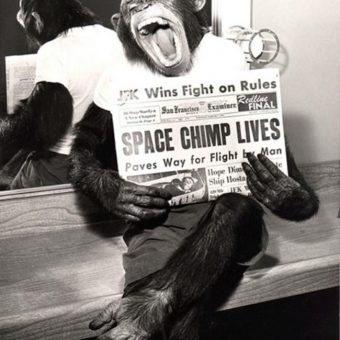 1961: Ham the chimpanzee is shot into space
