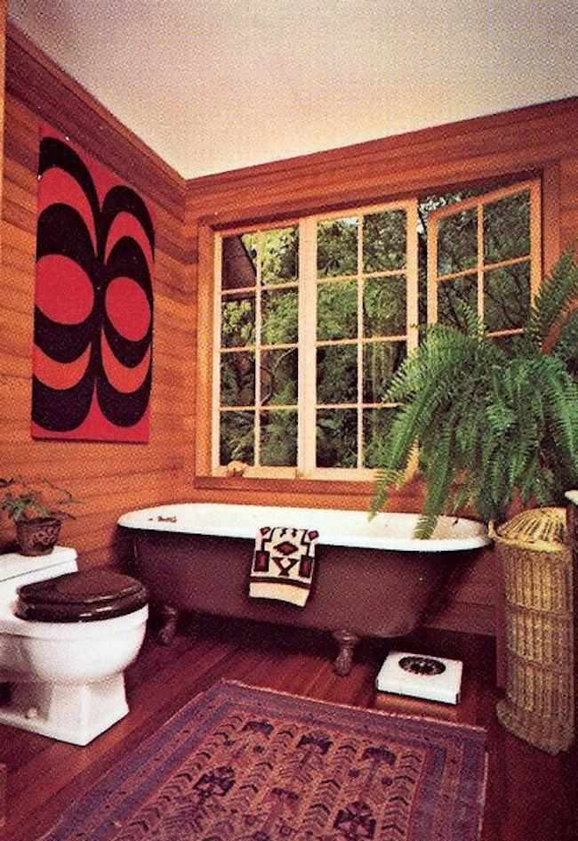 Houseplants of the 1970s ferns and tongues for Interior design 70s house