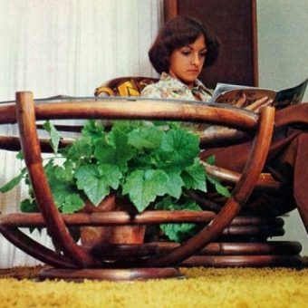 Houseplants of the 1970s (ferns and tongues)