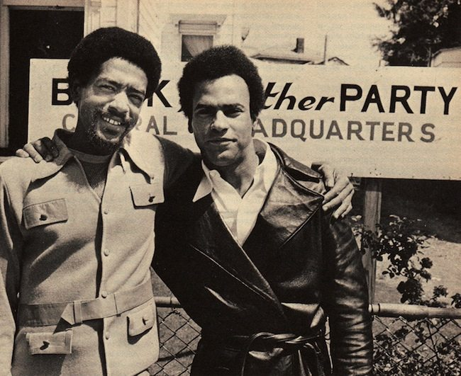 Essays on the black panther party