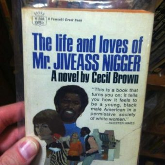 Book of the Day: The Life and Loves of Mr Jiveass Nigger