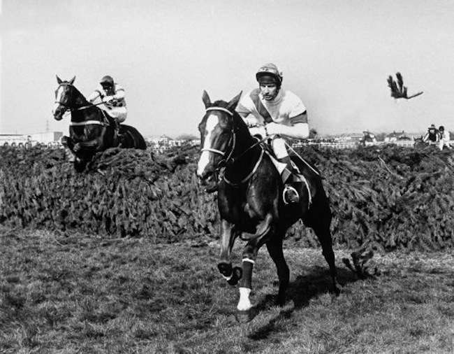 Horse Racing - The Grand National