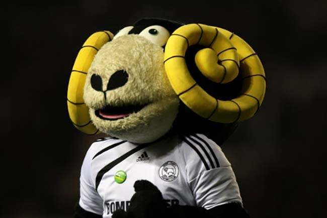 Rammie, Derby County mascot