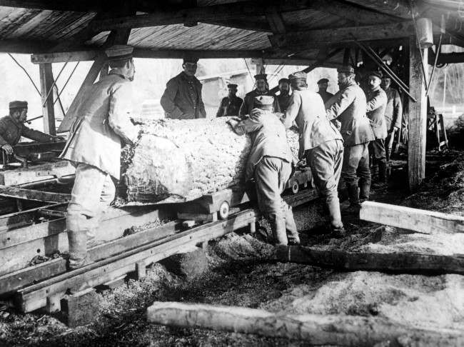 German troops saw tree trunks in the Argonne, for use in dug-outs and trenches.