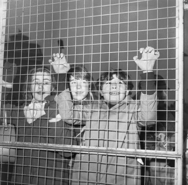 A Beatle fan claws at a metal fence as she welcomes the pop group on their arrival at London Airport, England on Feb 22, 1964. Some 5,000 people, many of whom had waited overnight, were at the airport. (AP Photo)