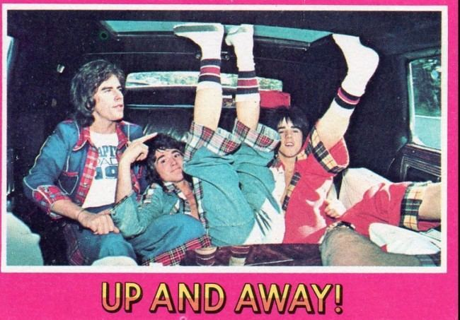 bay city rollers cards 18