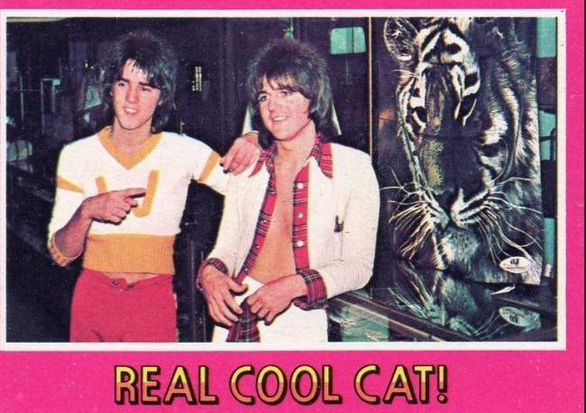 bay city rollers cards 19