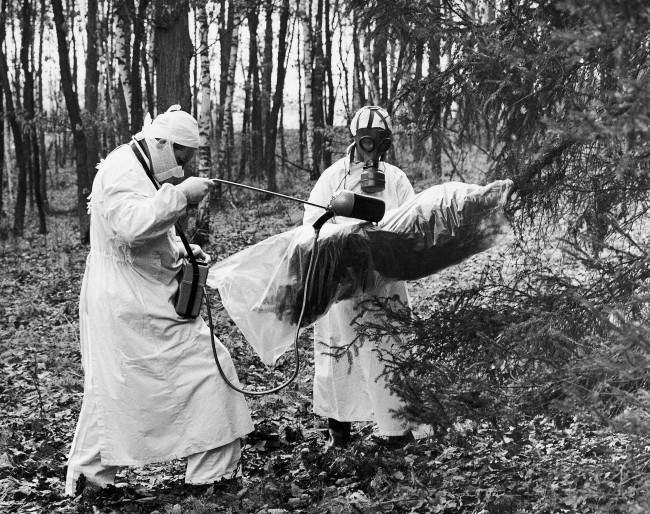 In protective outfits, chemist Rudolf Kohout and his assistant apply radioactive isotopes to a tree at the Institute of Forestry and Gamekeeping at Strnady, Czechoslovakia, March 30, 1962. The spraying is part of a research program to determine the harmful effects of sulphur dioxide on trees.