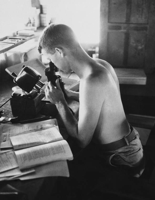 Commissioned entomologist Dr. James R. Douglas, of 3744 Sixth Ave, San Diego, Calif., examines a mosquito in the Malaria Control Unit''s entomology laboratory on the combat front in Guadalcanal on May 18, 1943. Specimens are classified, then filed in the box at right of microscope.