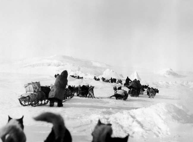 Following a crash of General Umberto Nobile's airship Italia, rescue efforts are underway. This photo, taken by Anthony Fiala, explorer, shows dog travel in the region where Nobile's party is down in the Franz Josef archipelago, Russia, June 16, 1928.