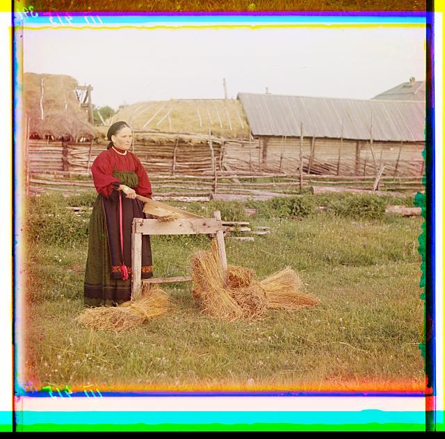Peasant woman breaking flax. Perm Province