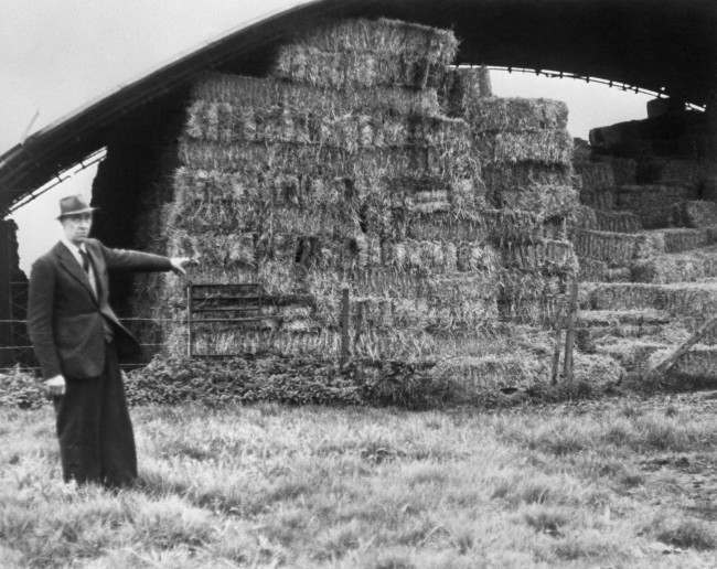 Mr William Morris, 61, standing near the hay barn on his farm, Blounts Farm, near Bishops Stortford, Herfordshire, where Harry Roberts is thought to have spent the night before his capture. Farmer Morris said he had driven the captured man to Bishop Stortford after his arrest by two armed police sergeants. Harry Roberts was charged with the murder of three policemen at Braybrook Street, East Acton, London, and was sentenced to life imprisonment. Date: 15/11/1966