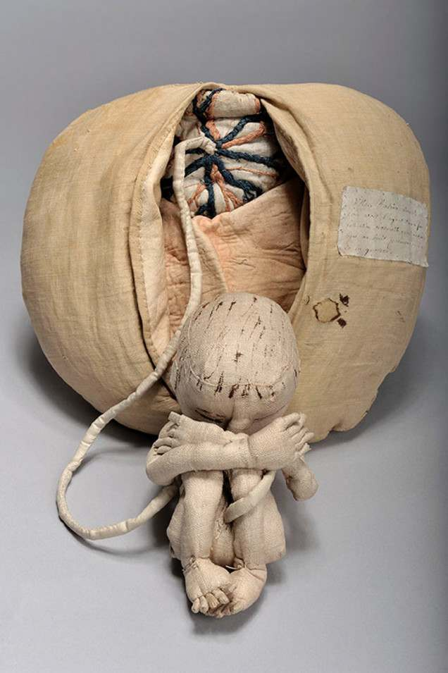 knitted womb