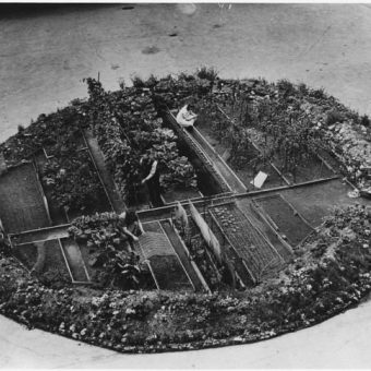 A Victory Garden Inside A London Bomb Crater, 1943