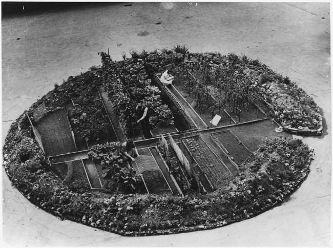 A Victory Garden in a Bomb Crater, London, 1943