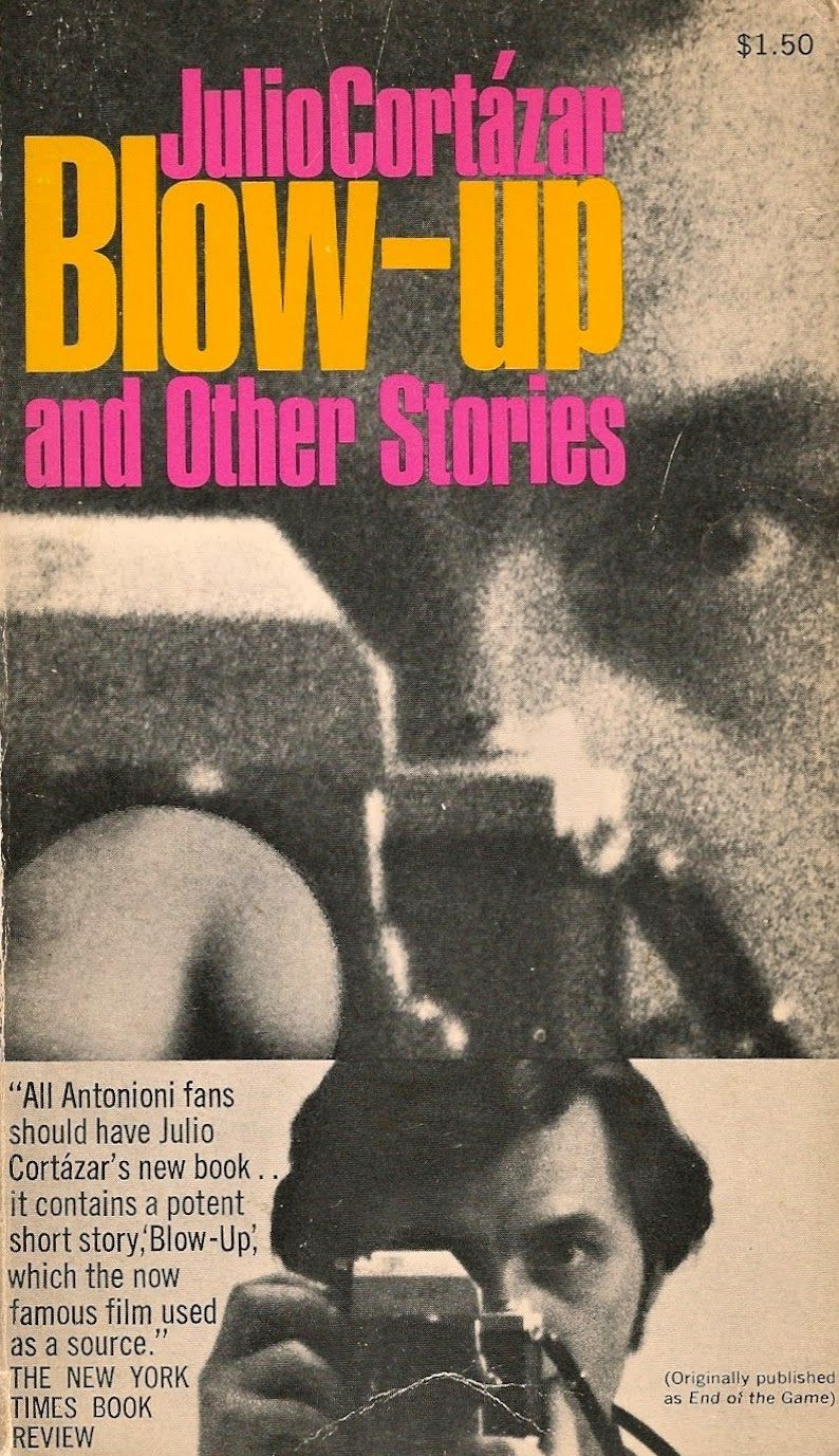 Blow Up book