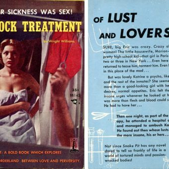An Ambush Of Psychotic Lust! 10 Sleazy Mid-Century Paperback Blurbs