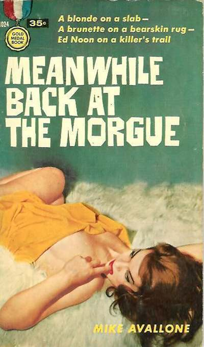 bad book covers (3)