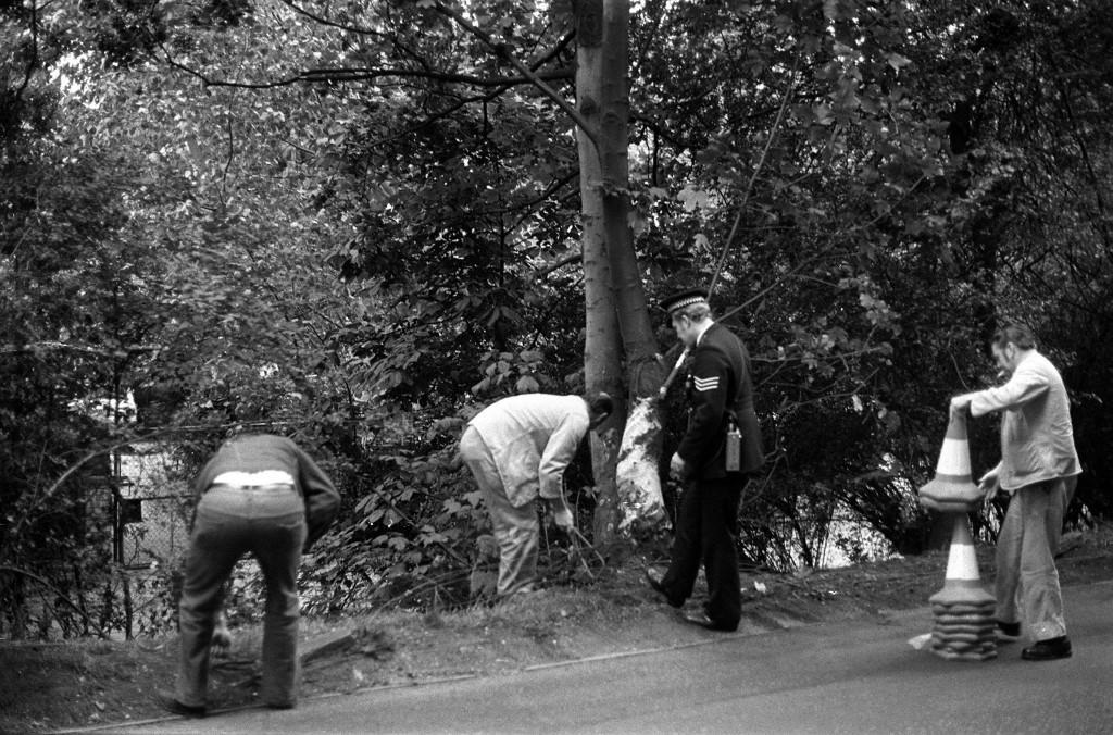 Police at the scene of the car crash in which 29 year old pop star Marc Bolan, of the group T-Rex, was killed, on 16/09/1977. The car, a purple mini, was driven by his girlfriend, American singer Gloria Jones. * ...who crashed into a tree in Gipsy Lane, Barnes, in south-west London.