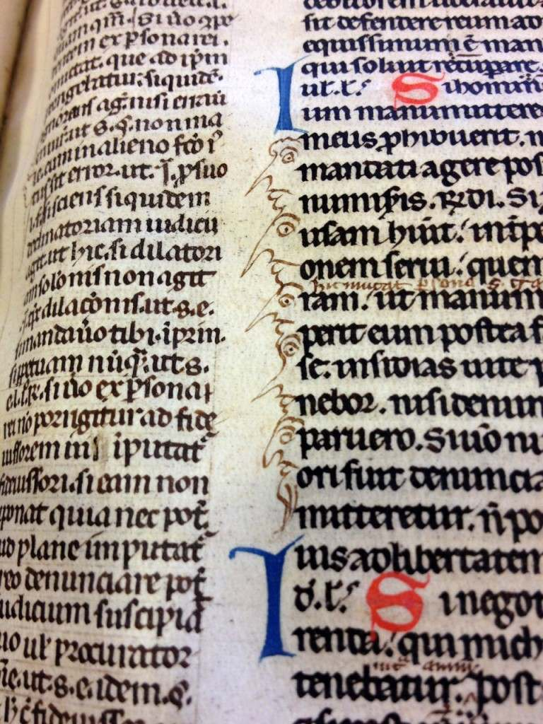 Students with pointy noses. Leiden, University Library, MS BPL 6 C (13th century).