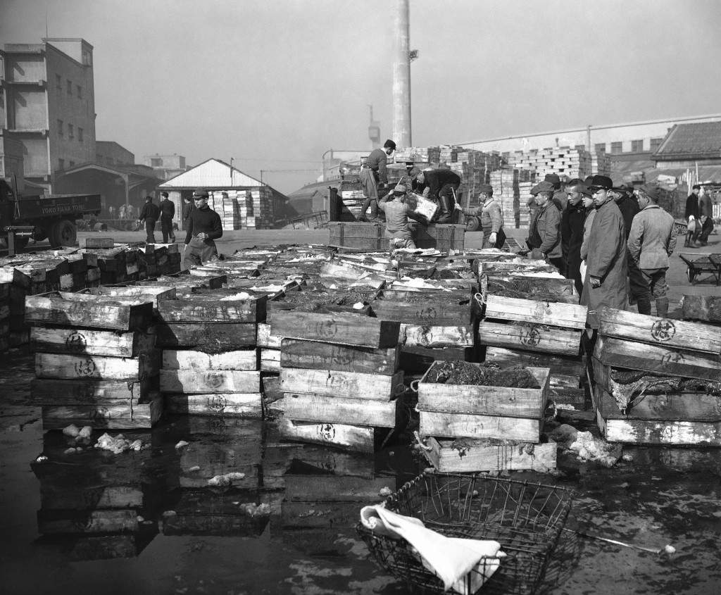 Whale meat is piled on the wharves as the Banshu-Maru is unloaded after its return from the Antarctic in Tokyo, Jan. 27, 1948 . (AP Photo) Ref #: PA.11787854