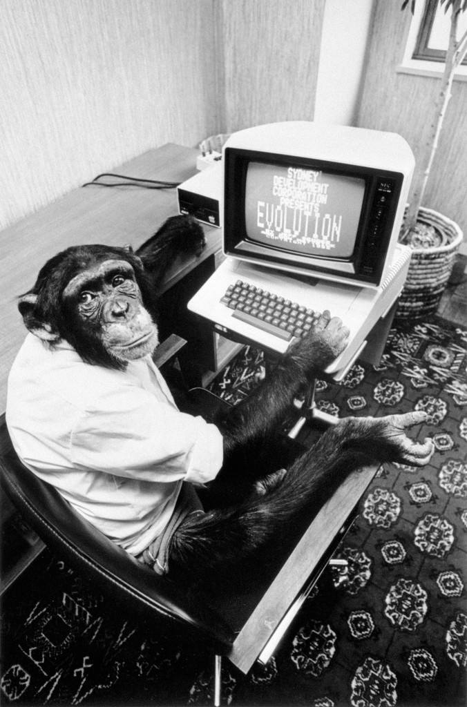 "A chimp at the controls of the latest computer game from American, ""Evolution"" Ref #: PA.12849913  Date: 17/06/1983"