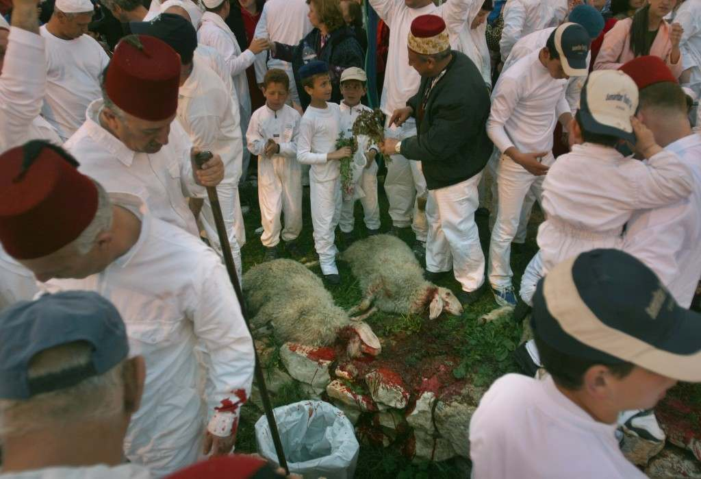 Samaritans watch slaughtered sheep during the ritual of Sacrifice, part of a Passover ceremony, in Mount Grizin, overlooking the West Bank town of Nablus, Tuesday April 11, 2006. Samaritans descended from the ancient Israelite tribes of Menashe and Efraim but broke away from mainstream Judaism 2,800 years ago. Today, the remaining 700 Samaritans, live in the Palestinian city of Nablus in the West Bank and the Israeli seaside town of Holon, south of Tel Aviv. (AP Photo/Baz Ratner) Ref #: PA.3410614  Date: 12/04/2006
