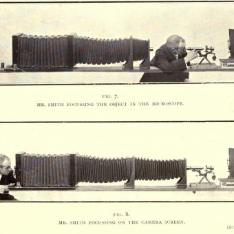 Nature Through Microscope and Camera: The Religious Tract Society Sees God In The Minute (1909)