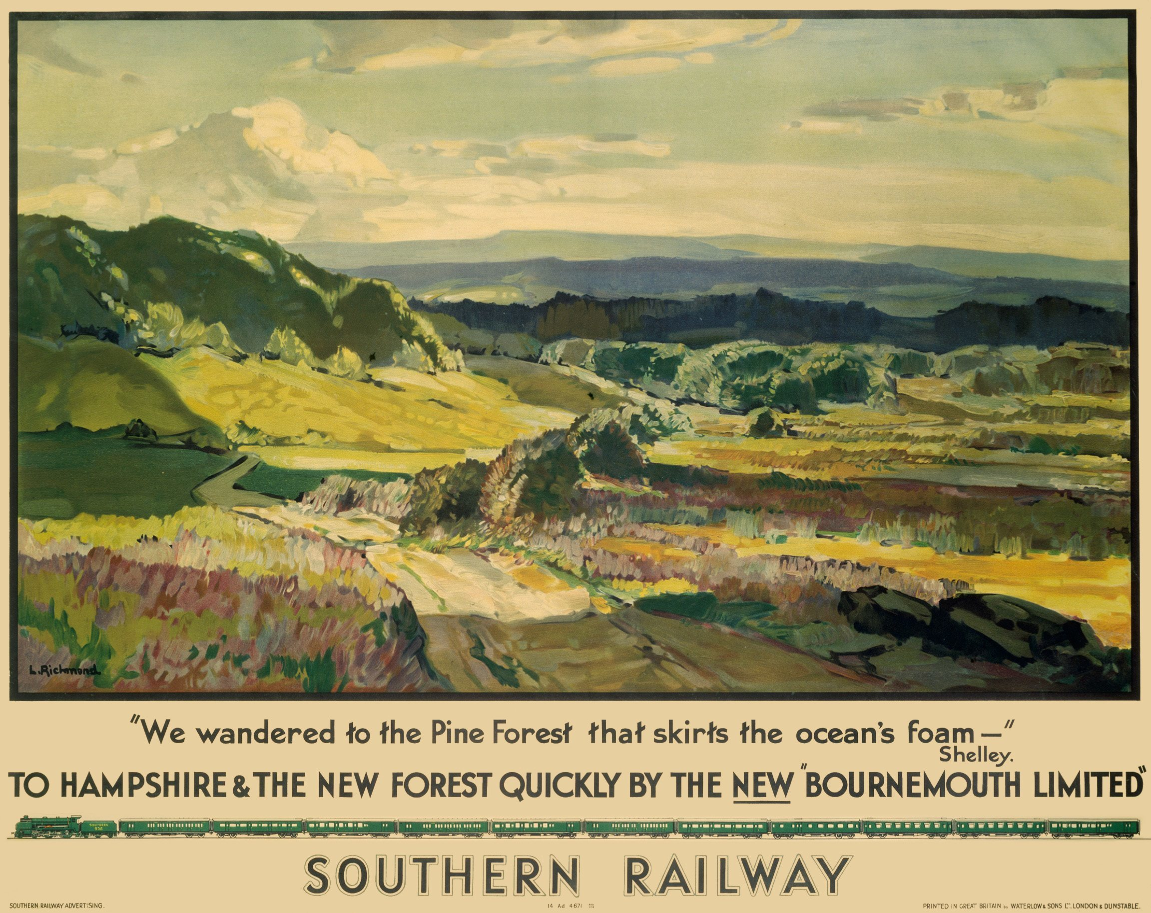 Vintage British Rail Hampshire New Forest Railway Poster Print A3//A4