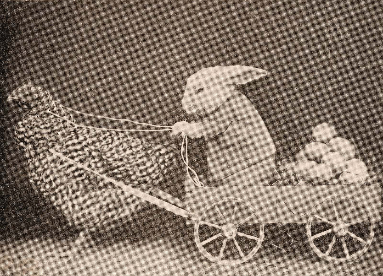 Happy Easter Images 2019 - Funny Easter Pictures, Bunny ...