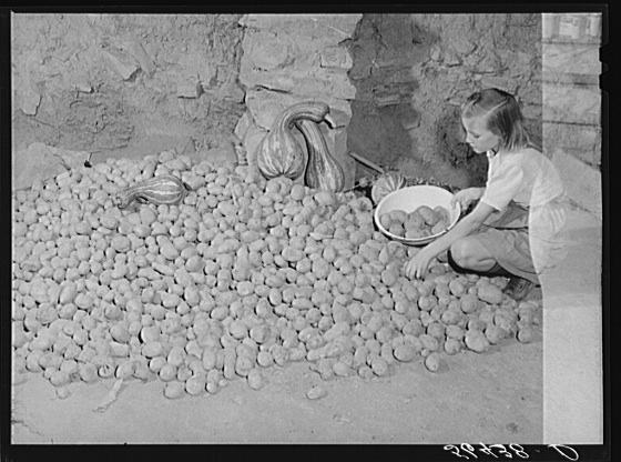 osh Calahan's little girl getting some of the potatoes out of the cellar of their new home. These are grown on their farm. Southern Appalachian Project near Barbourville, Knox County, Kentucky Creator(s): Wolcott, Marion Post, 1910-1990, photographer Date Created/Published: 1940 Nov.