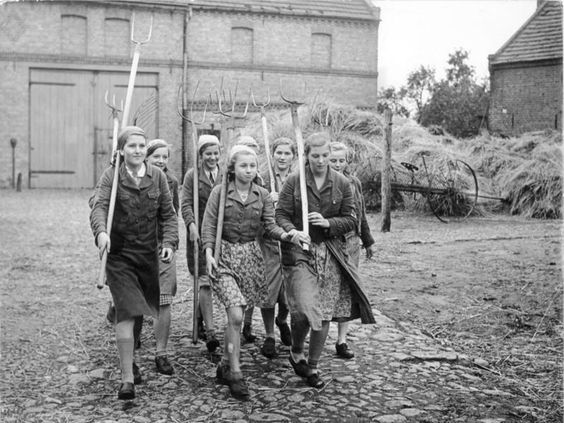 Berlin girls of the BDM, haymaking, 1939