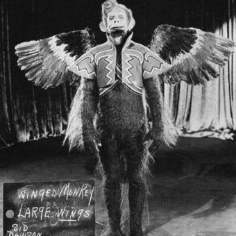 Flying Monkey Wardrobe Test From 'The Wizard of Oz' (1939)