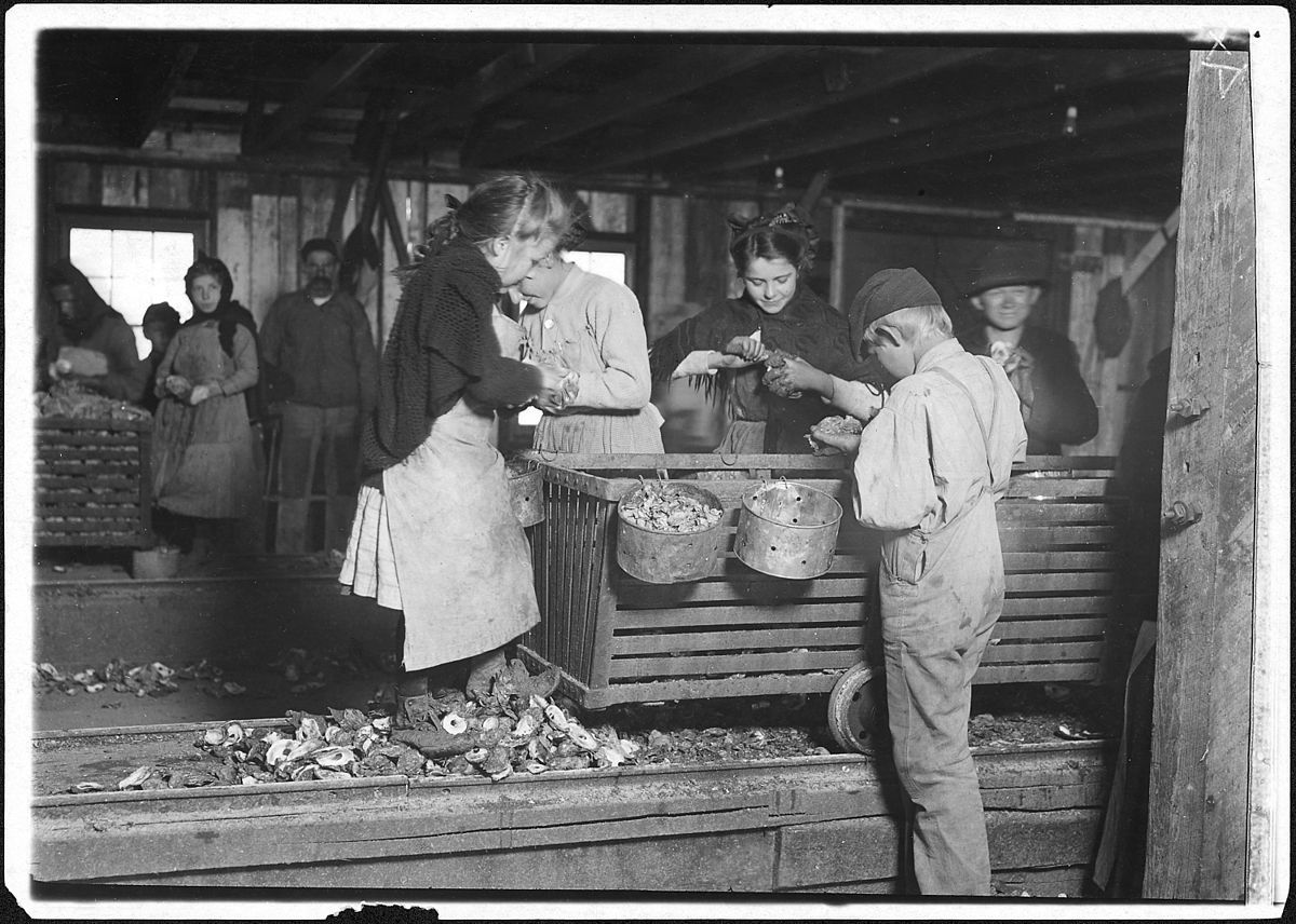 ittle Lottie, a regular oyster shucker in Alabama Canning Co., 1911, Bayou La Batre, Alabama