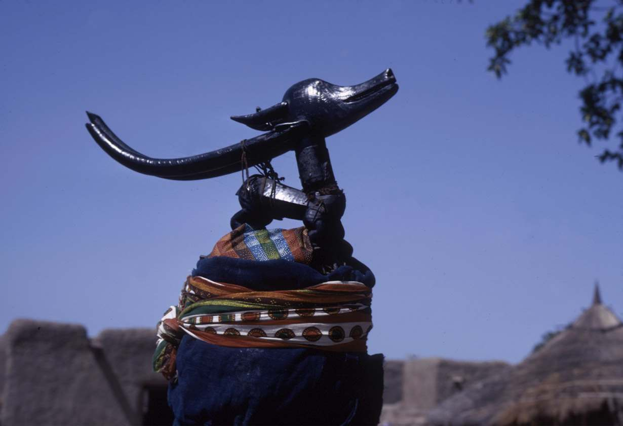 Masked performer wearing male horizontal Chi wara headdress, referred to as n'gonzon koun, Bamako (national district), Mali.