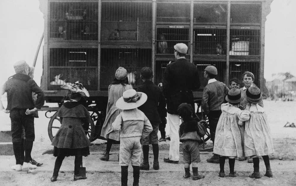 August 1891:  Animals huddle in tiny cages on a cart. A mobile zoo, or menagerie, on the sands at Yarmouth has drawn a small crowd of children.  (Photo by Paul Martin/General Photographic Agency/Getty Images)
