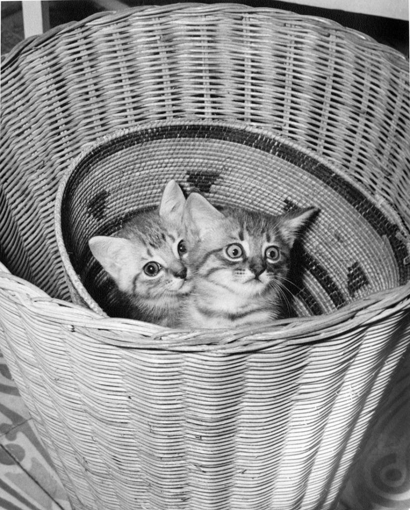 EH4086P     Date Unknown Cristobal and his sister Izzy play in Hemingway's African Baskets.