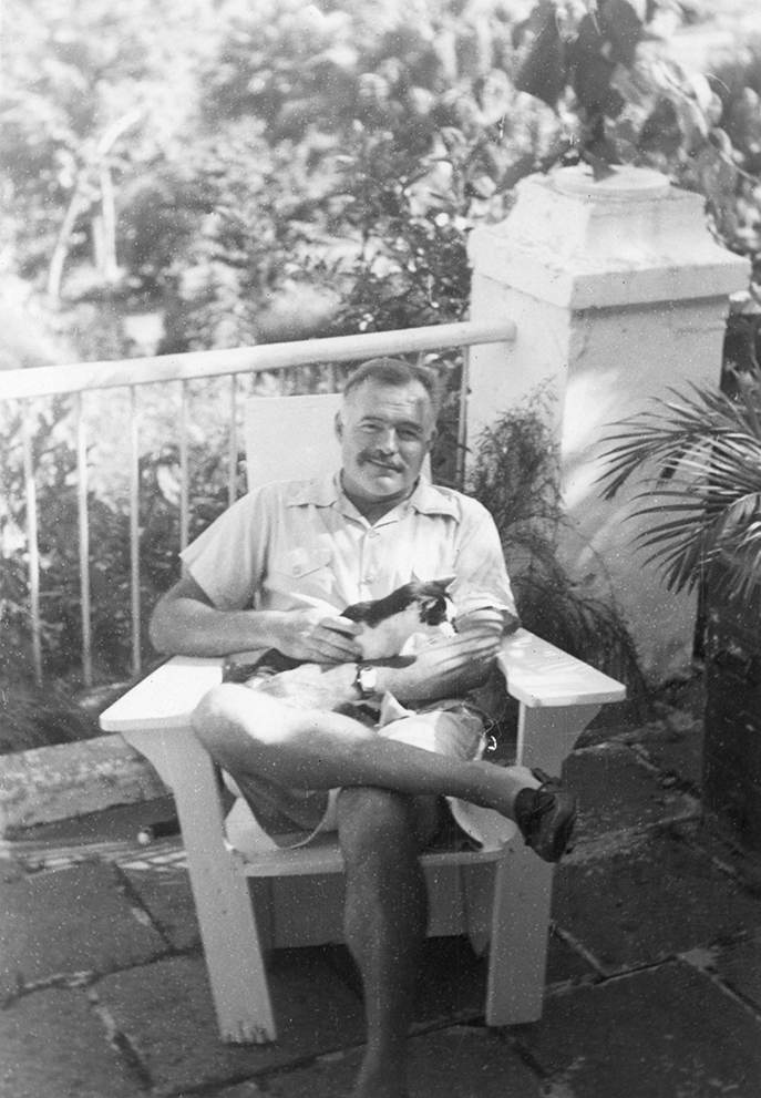EH4448     Date Unknown Ernest Hemingway with his cat, Boise, at Finca Vigia. Spots original to print