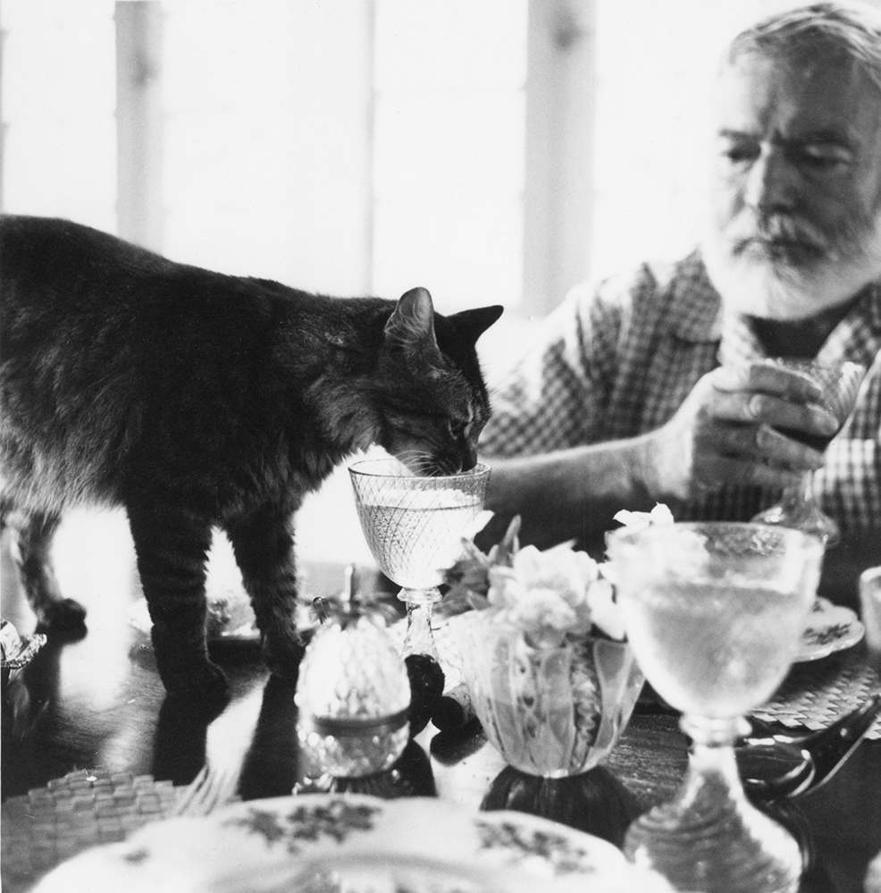ernest hemingway s cat in the rain Ernest hemingway (1899-1961) the great american novelist and short story   cat in the rain was based in part on the rainy day ernest and hadely spent at.