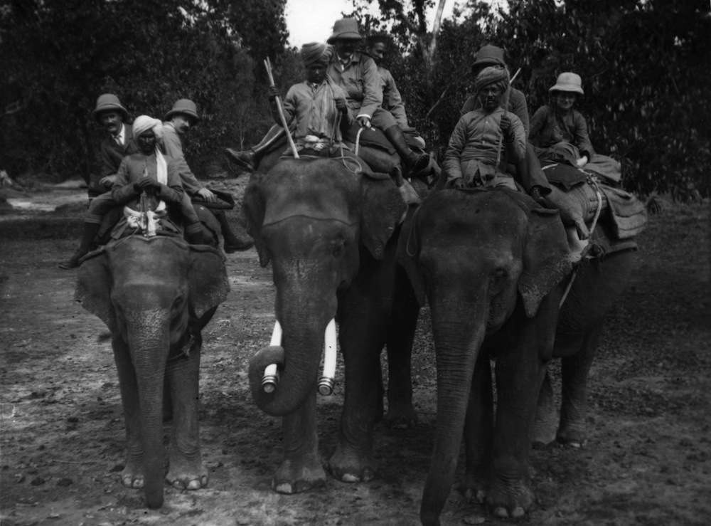 circa 1907:  Officers from the British Army take part in a tiger hunt.