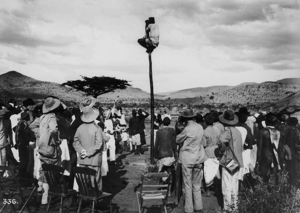 A local guide climbs up a pole to search for a likely quarry during a big game hunt in Africa, circa 1895.