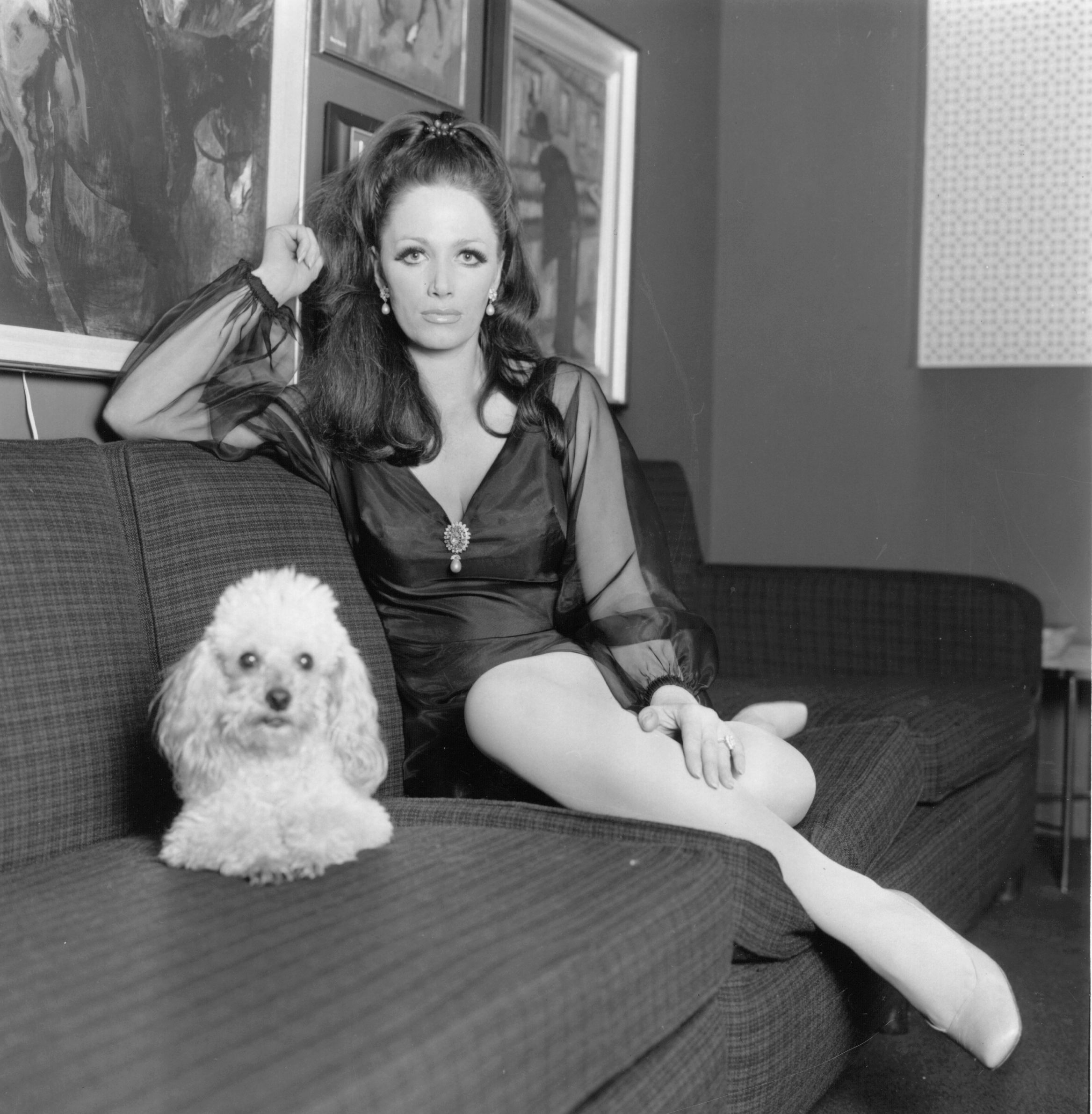 3rd February 1968:  Writer and actress, Jackie Collins, at home with her pet poodle.  (Photo by Express/Express/Getty Images)