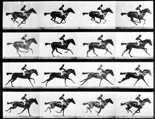 Photographer Eadweard Muybridge's study of a horse at full gallop in collotype print.  (Photo by Eadweard Muybridge/The LIFE Picture Collection/Getty Images)