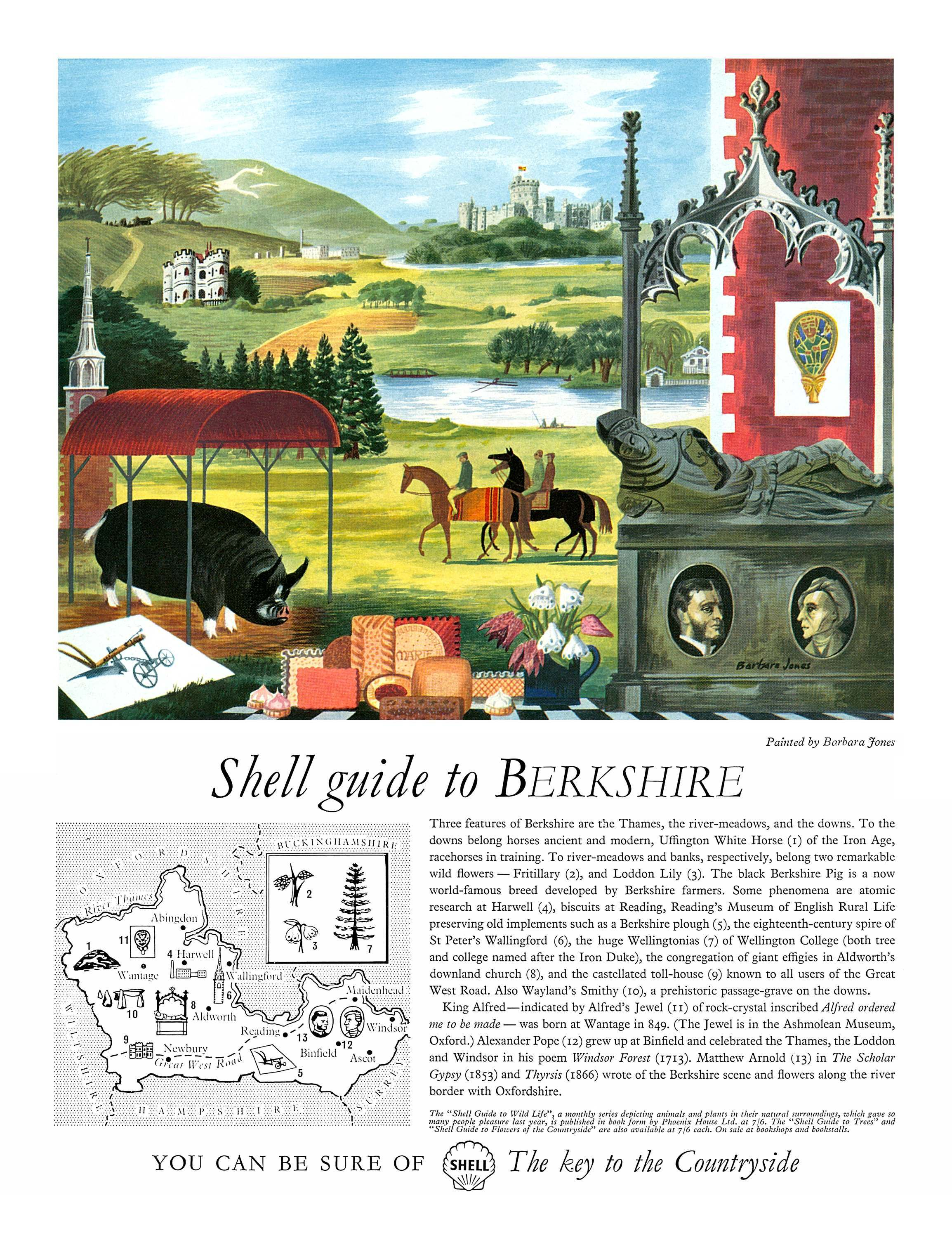 1959 Shell ad Illustration by Barbara Jones Berkshire