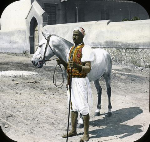 Arabian Horse and Sais, Cairo This slide colored by Joseph Hawkes. Hooper