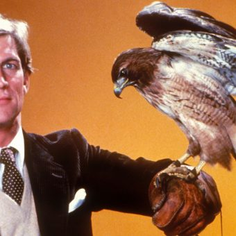 Sci-Fi TV: 1983 – Wizards, Holograms, and Manimal!