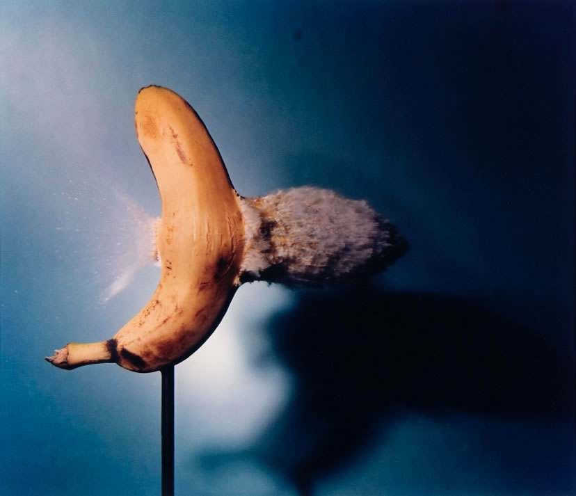 Bullet through Banana 1964